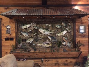 LODGE FISH SCENE